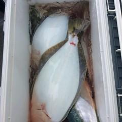 12月8日 (金)  午前便・ヒラメ釣りの写真その5