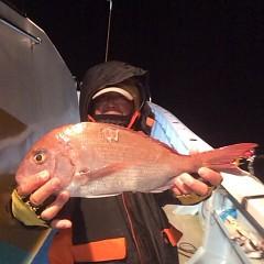 12月8日 (金)  午後便・ウタセ真鯛の写真その1