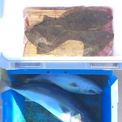 12月 13日 (水) 午前便・ヒラメ釣りの写真その3