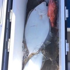 12月 15日 (金) 午前便・ヒラメ釣りの写真その5