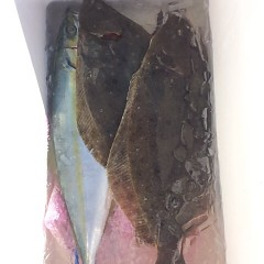 12月 15日 (金) 午前便・ヒラメ釣りの写真その6