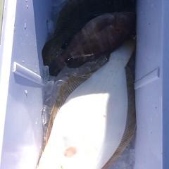 12月 15日 (金) 午前便・ヒラメ釣りの写真その8