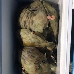 12月 15日 (金) 午前便・ヒラメ釣りの写真その9