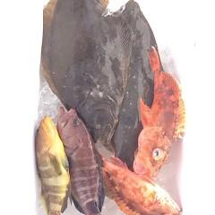12月 27日 (水) 7時出船ヒラメ釣りの写真その8