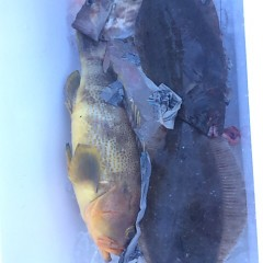 1月 4日 (木) 8時出船ヒラメ釣りの写真その5