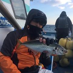 1月 6日 (土) 午後便・アジ釣りの写真その4