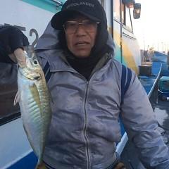 1月 11日 (木) 午後便・アジ釣りの写真その2