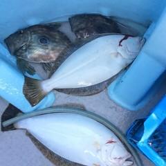 1月 20日 (土)  午前便・ヒラメ釣りの写真その8