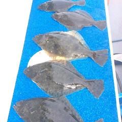 1月31日 (水) 午前便・ヒラメ釣りの写真その3