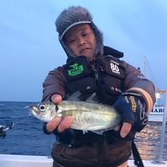 2月24日 (土) 午後便・アジ釣りの写真その3