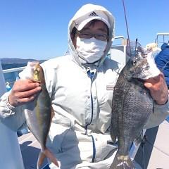 3月17日(土)  午前便・アジ釣りの写真その5