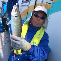 3月26日(月)午前・午後便・アジ釣りの写真その1