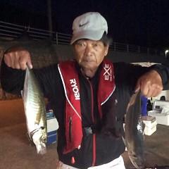3月28日(水)午前・午後便・アジ釣りの写真その2
