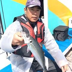 3月31日(日)  午前便・アジ釣りの写真その6