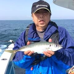 3月31日(日)  午後便・アジ釣りの写真その2