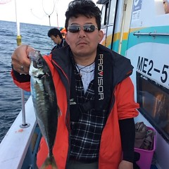 3月31日(日)  午後便・アジ釣りの写真その5