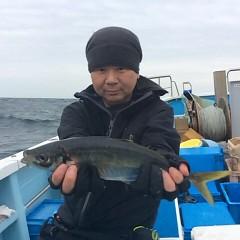 4月14日(土)  アジ釣りの写真その4