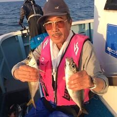 4月20日(金)  午後便・アジ釣りの写真その2