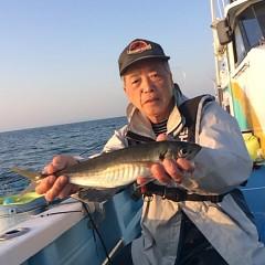 4月20日(金)  午後便・アジ釣りの写真その4