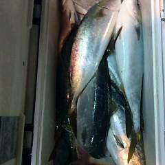 4月21日(土)  午後便・ウタセ真鯛の写真その6