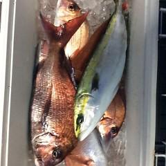 4月22日(日)  午前便・アジ釣り・午後便・ウタセ真鯛の写真その4