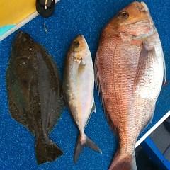 4月23日(月)  午前便・アジ釣り・午後便・ウタセ真鯛の写真その6