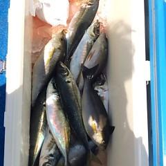 4月23日(月)  午前便・アジ釣り・午後便・ウタセ真鯛の写真その7