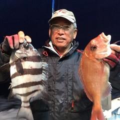 4月 27日(金) アジ釣り・ウタセ真鯛の写真その4