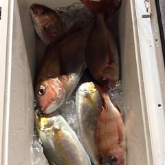 4月 27日(金) アジ釣り・ウタセ真鯛の写真その7