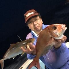4月29日(日)午後便・ウタセ真鯛の写真その2