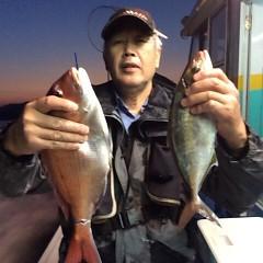 4月29日(日)午後便・ウタセ真鯛の写真その3