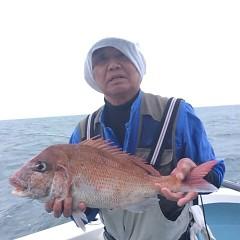 5月6日(日)午前便・アジ釣り 午後便・ウタセ真鯛の写真その5