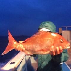5月6日(日)午前便・アジ釣り 午後便・ウタセ真鯛の写真その7