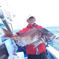 5月11日(金)午後便・ウタセ真鯛の写真その1