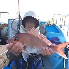 5月11日(金)午後便・ウタセ真鯛の写真その4