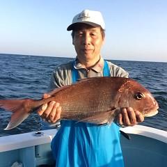 5月14日(月)午後便・ウタセ真鯛の写真その4