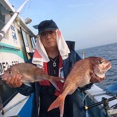 5月15日(火)午後便・ウタセ真鯛の写真その2