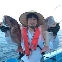 5月15日(火)午後便・ウタセ真鯛の写真その7