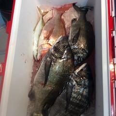 5月18日(金)午前便・アジ釣り・午後便・ウタセ真鯛の写真その9