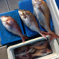 5月20日(日)午後便・ウタセマダイ釣りの写真その9