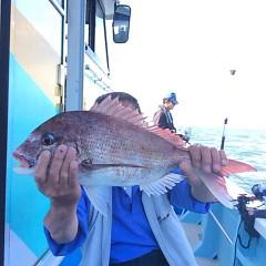 5月21日(月)午後便・ウタセ真鯛の写真その7