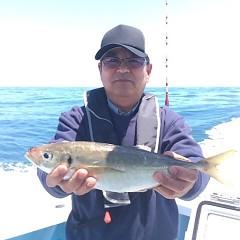 5月22日(火)午前便・アジ釣り・午後便・ウタセ釣りの写真その1