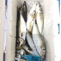 5月25日(金)午前便・アジ釣り午後便・ウタセ真鯛の写真その6
