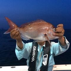 5月25日(金)午前便・アジ釣り午後便・ウタセ真鯛の写真その9