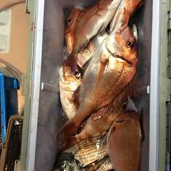 5月25日(金)午前便・アジ釣り午後便・ウタセ真鯛の写真その10