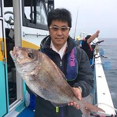 5月26日(土)午後便・ウタセ真鯛の写真その1
