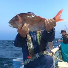 5月26日(土)午後便・ウタセ真鯛の写真その4