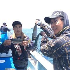 5月27日 午前便・アジ釣りの写真その3