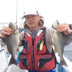 5月28日(月)午前便・アジ・イサキ釣りの写真その2