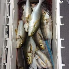 5月31日(木)午前便・イサキ釣りの写真その9
